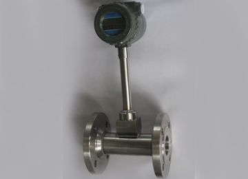 DN50 Liquid Mass Flow Meter