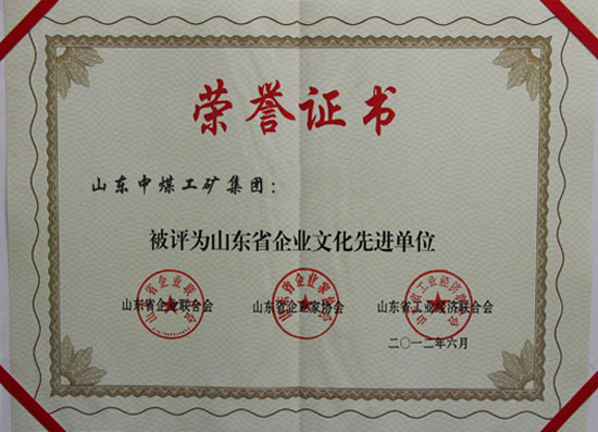 China Coal Group Provincial Certificate